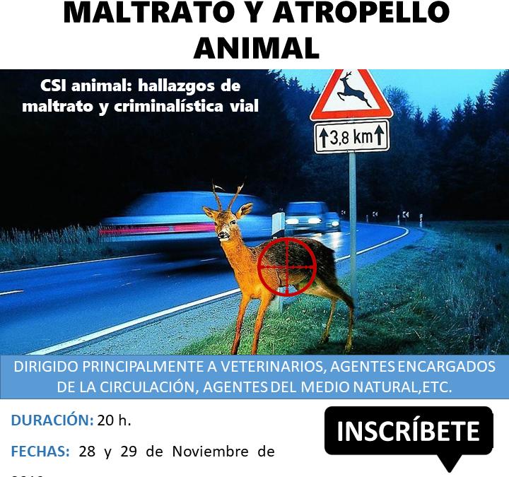 CURSO ÁNALISIS FORENSE EN CASOS DE MALTRATO Y ATROPELLO ANIMAL